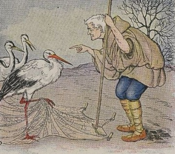THE FARMER AND THE STORK – Aesop Fables for Kids