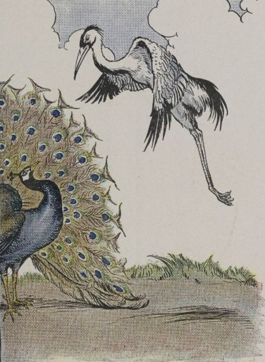 THE PEACOCK AND THE CRANE – Aesop Fables for Kids