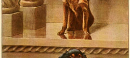 KING CHARLES SPANIEL – Information About Dogs