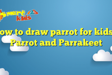 How to draw parrot for kids – Parrot and Parrakeet